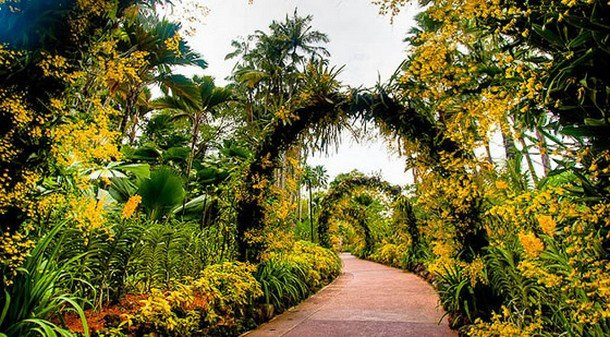 20 photographs of the world 39 s most famous gardens world for Au jardin singapore botanic gardens