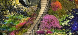 20 Photographs Of The World's Most Famous Gardens