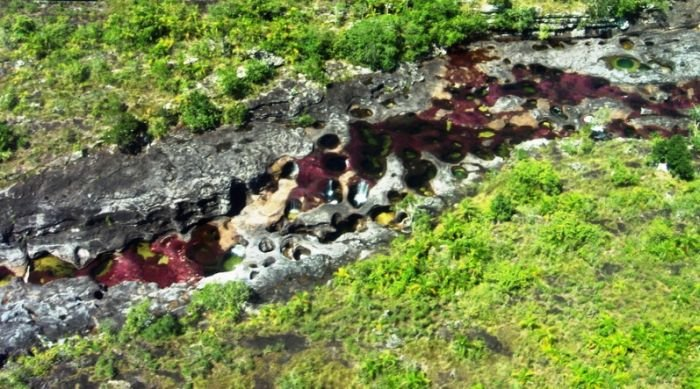 cano-cristales-aka-the-river-of-five-colors_700x389_0694