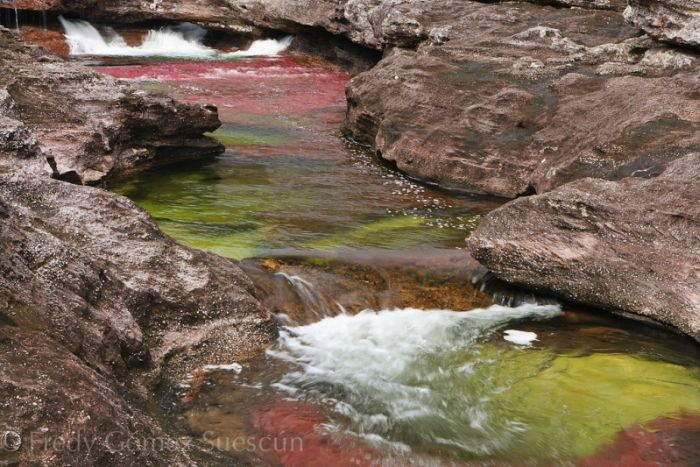 cano-cristales-aka-the-river-of-five-colors_700x467_52ab