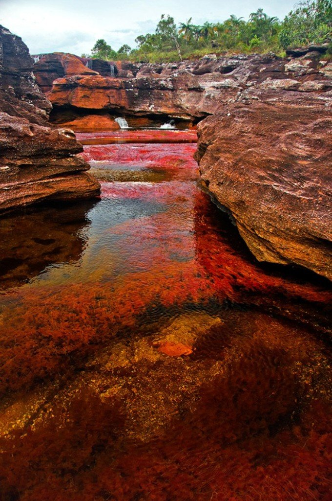 Cano Cristales, The Seven Colored River