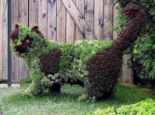 Creative Garden Design Pictures | World Inside Pictures