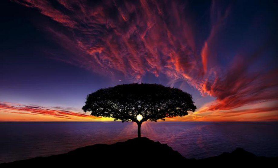 amazing-nature-landscapes-14