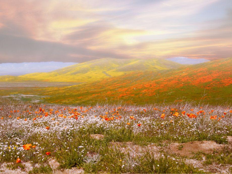 amazing-nature-landscapes-18
