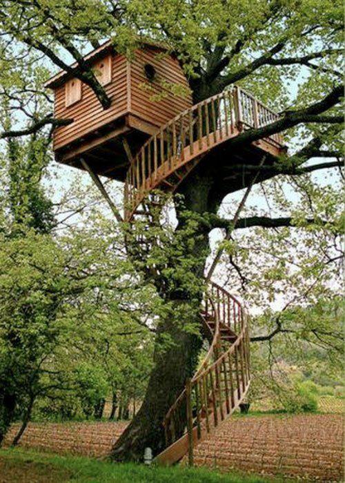 tree_house_06 tree_house_16 tree_house_26
