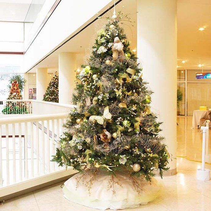 Beautiful Christmas Tree Images Part - 26: 7 8 9 10 11 ...
