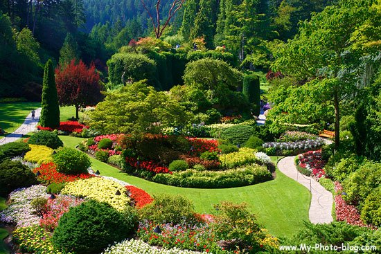 6 Best Gardens In The World That You Should See In Your