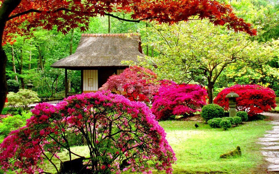 Pretty Backyard Gardens : 16 The Most Beautiful Sights In The World  World inside pictures