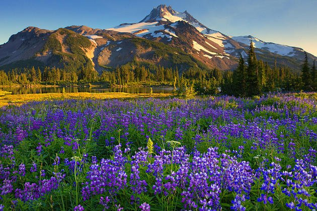 jefferson-park-mountains-kevin-mcneal