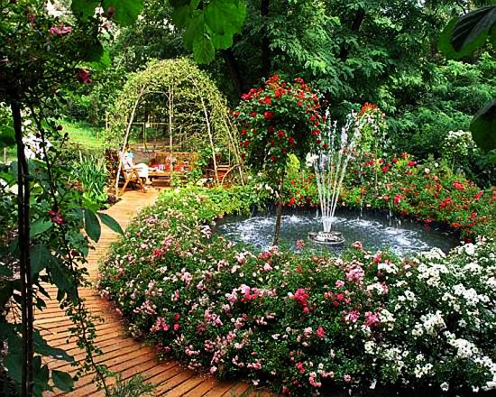 Дачный дизайн с розами