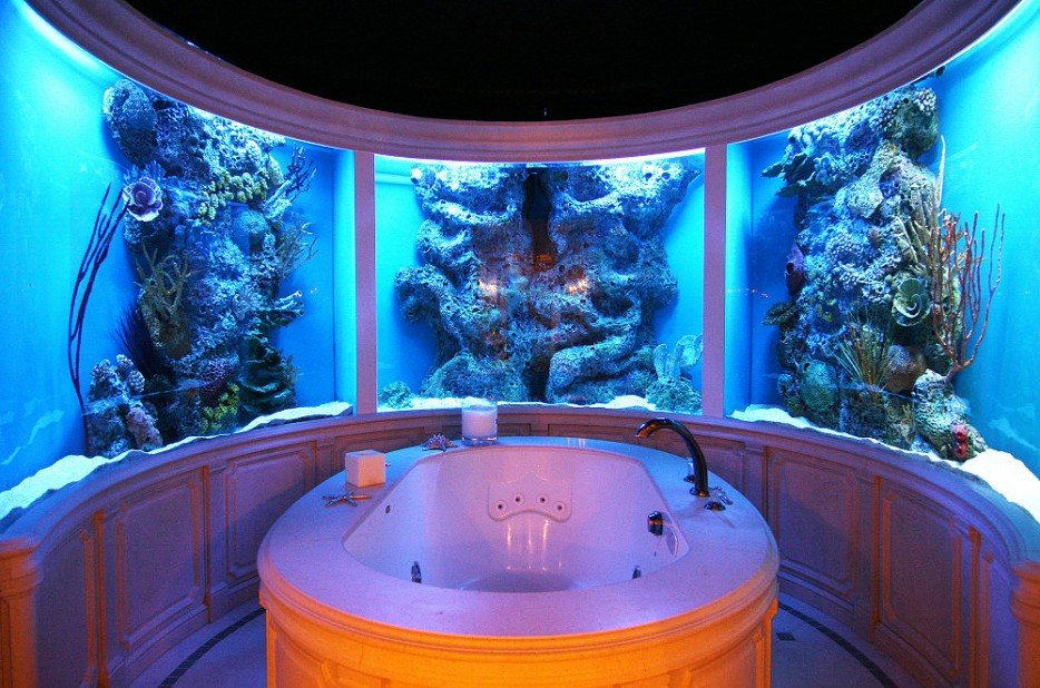 Coolest fish tank in the world images for Coolest fish in the world