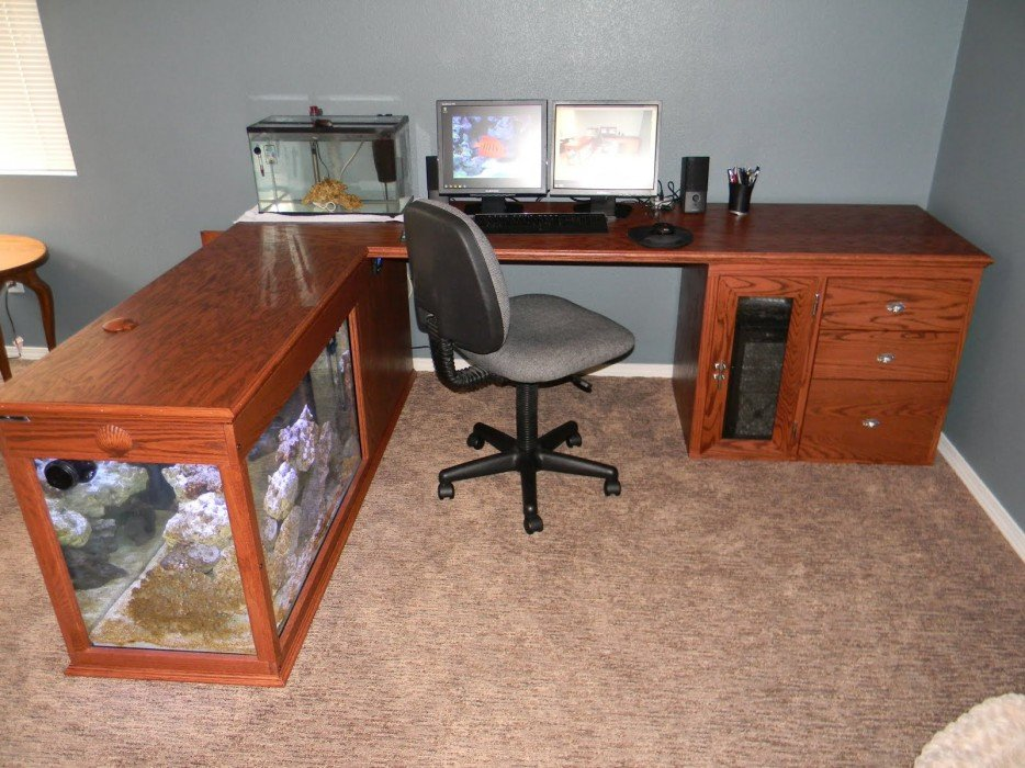 Fish Tank In Your Office