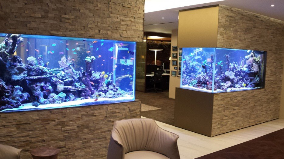 22 Incredibly Ideas How To Beautify Your Home With Fish