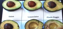 Your Avocados Will Never Turn Brown When You Will See This Video