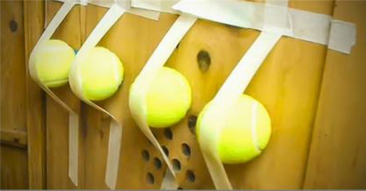 tenniss