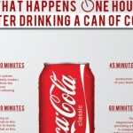 This Infographic Claims To Show What Happens One Hour After Drinking A Can Of Coke