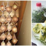 10 Absolutely Brilliant Ways To Make Your Groceries Last Longer