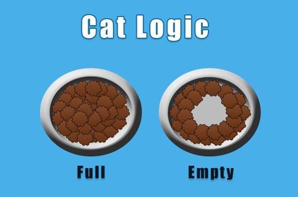 cat-logic-funny-5__605