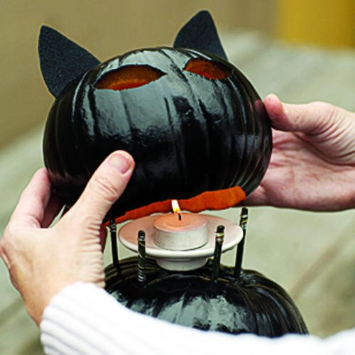 Smart and Easy Way How To Make Black Cat Jack OLanterns For More Spectacular Halloween Party