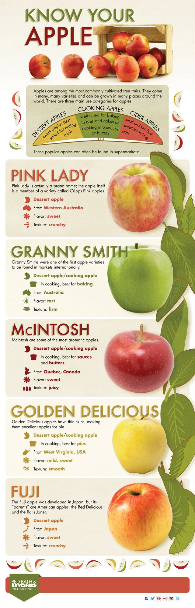 12 Amazing Super Useful Kitchen Cheat Sheets You Should Know About