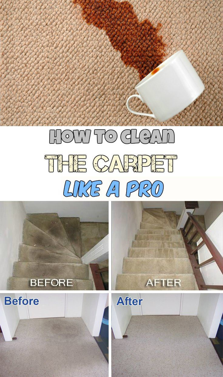 How To Remove Black Shoe Dye From Carpet