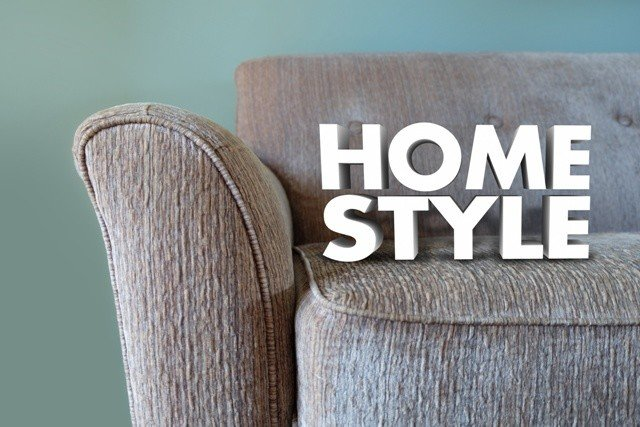 Home Style Couch Furniture Interior Design Decor