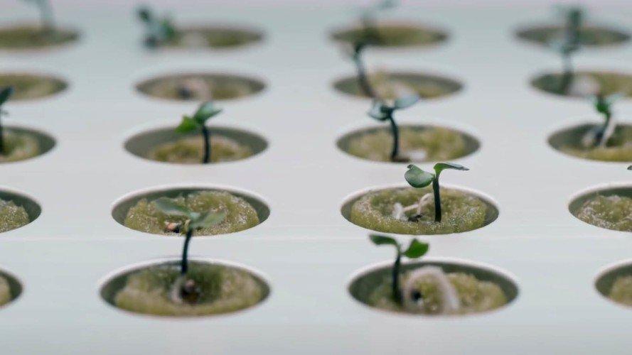 ikea-hydroponics-01-889x500