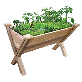 Garden Bed ...