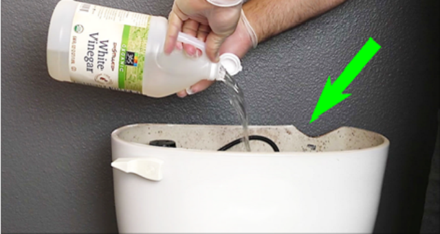 He Pours White Vinegar Inside His Toilet Tank. When He Flushes…; BRILLIANT Result