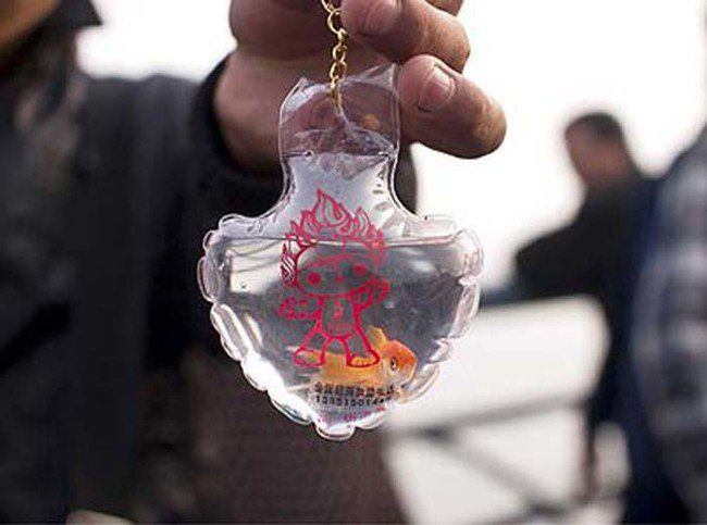 Live goldfish keychains promoting the Olympic Games on sale in Qingdao, China - 01 May 2008...Mandatory Credit: Photo by Sipa Press / Rex Features ( 766407A ) A keychain with a 2008 Beijing Olympics mascot imprinted on it and a live goldfish inside Live goldfish keychains promoting the Olympic Games on sale in Qingdao, China - 01 May 2008