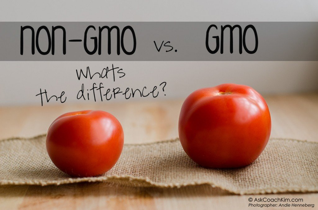 the many positive aspects of the genetically modified organisms