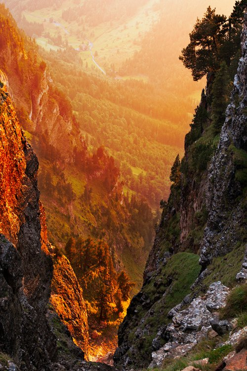 258 Golden Canyon, Swiss Alps