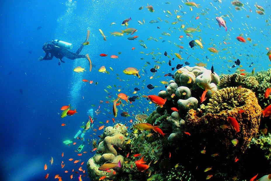 Pulau-Sipadan-Malaysia