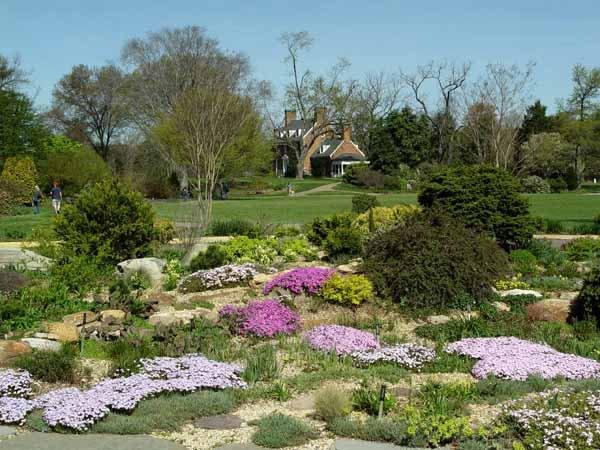 green.spring.rock_.garden2