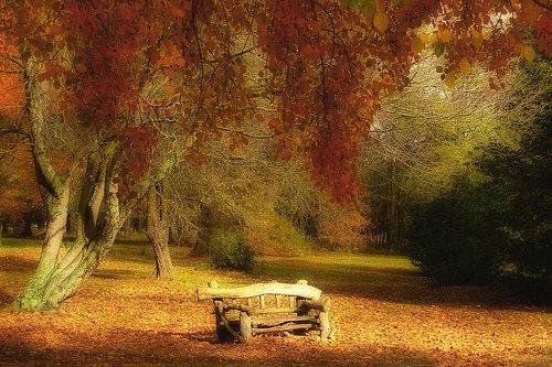 Fall19