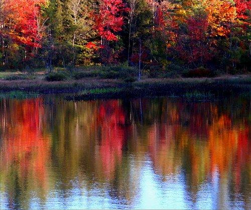 Fall3