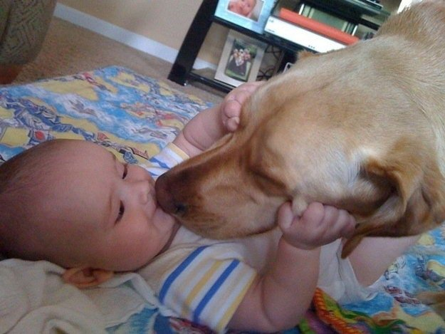 Happy accompanied moments of cute kids and pet dogs (01)