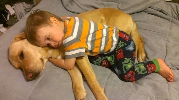 Happy accompanied moments of cute kids and pet dogs (16)