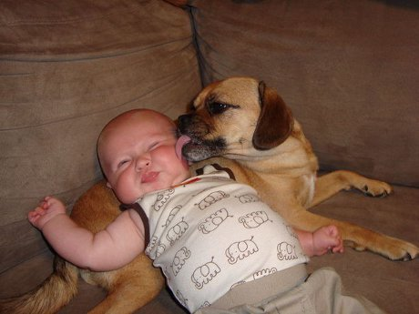 kid-with-dog-3