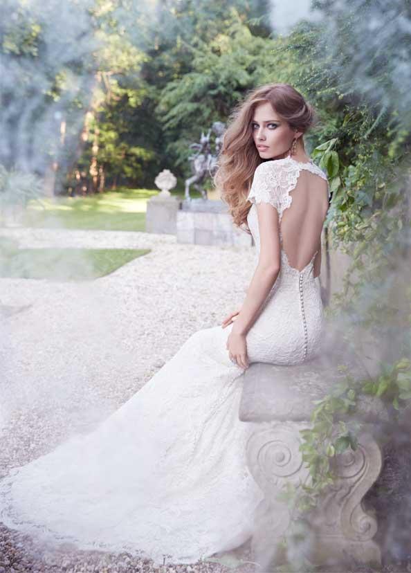 Blush Bridal Collection