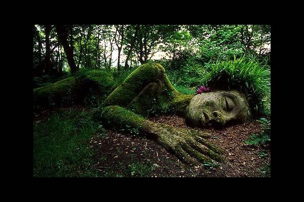 Creative_Garden_Design