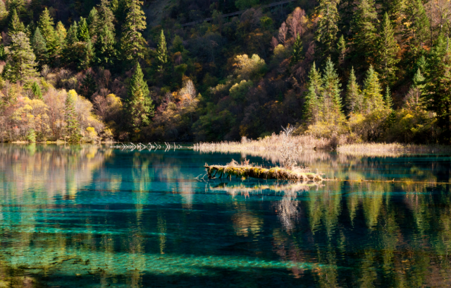 Most Beautiful Lake In The World Jiuzhaigou World Inside