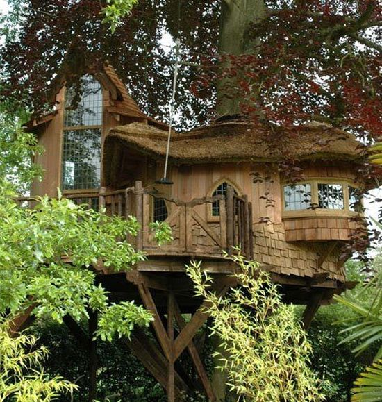 tree_house_01