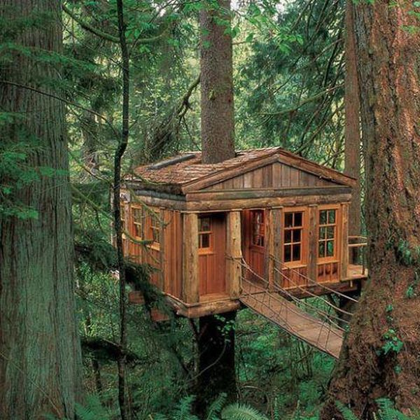 tree_house_02