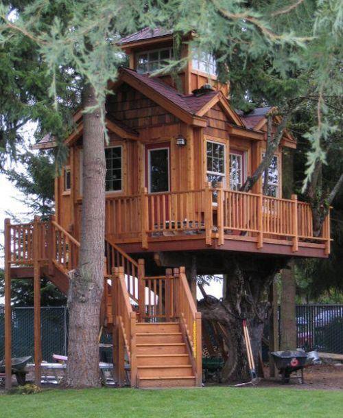 tree_house_04