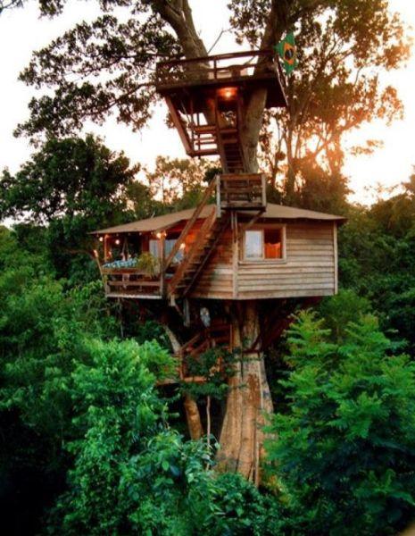 tree_house_13