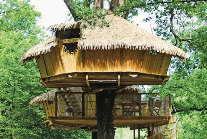 tree_house_14