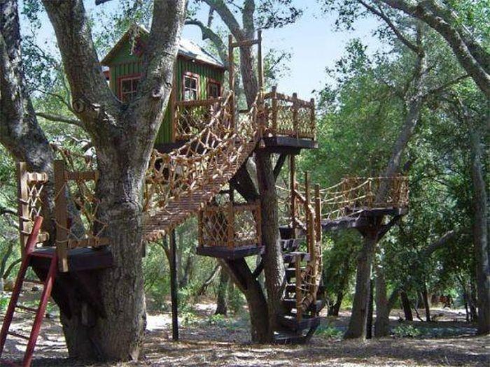tree_house_18