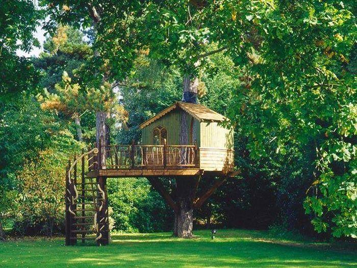 tree_house_19