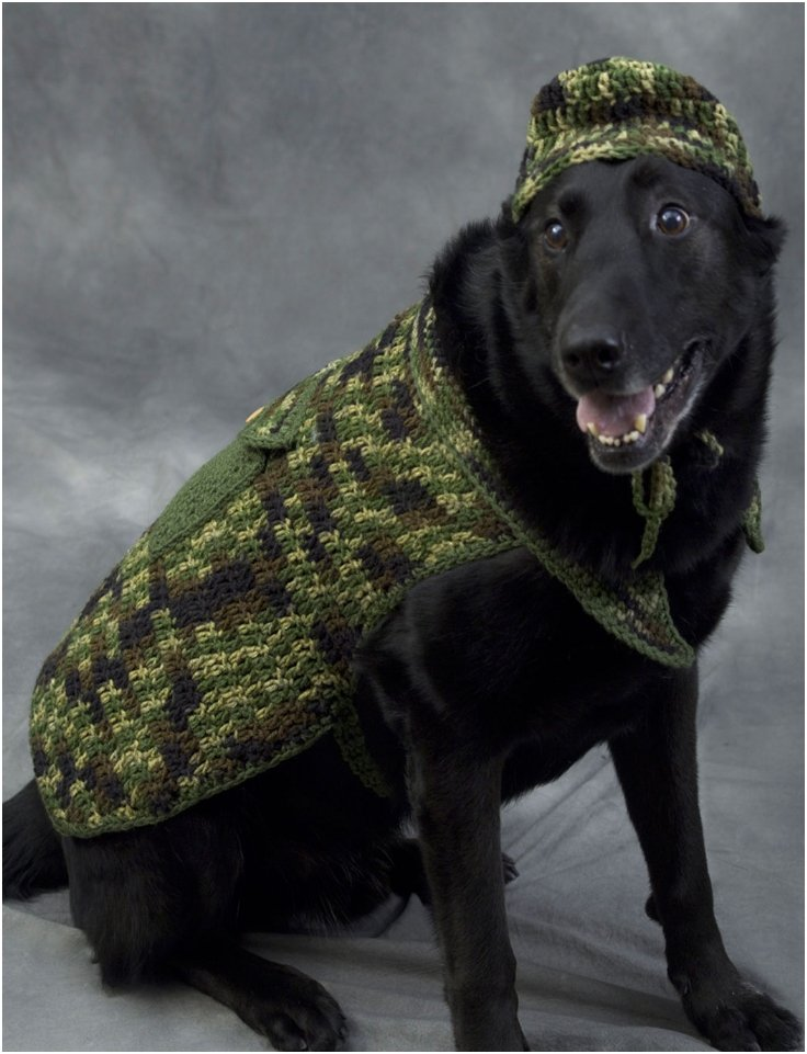 diy big dog sweater